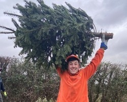 Sean Erwood with a recycled Christmas tree (cropped)